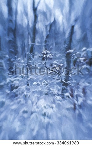 An original photograph of mountain laurel in winter transformed into a blue toned painting