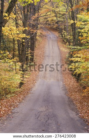 An unpaved road through the woods, Sandwich Notch Road, New Hampshire - stock photo