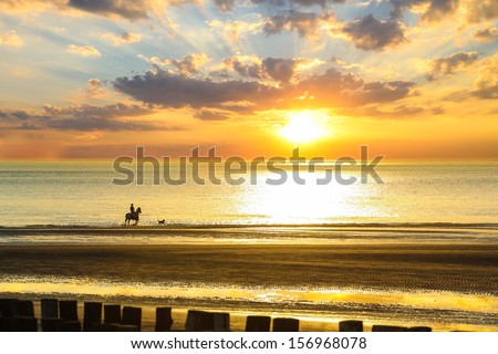 An unrecognizable woman rides on the back of a horse in the water on the shore line of a sea accompanied by a dog during a sunset. - stock photo