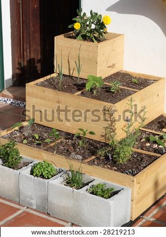 An urban square foot garden - stock photo