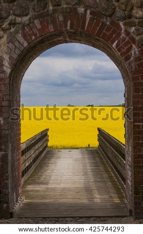 An view from the Gables of Manstorp, a ruin of an old manor outside Malmo in Vellinge, Skane when the canola fields are blooming