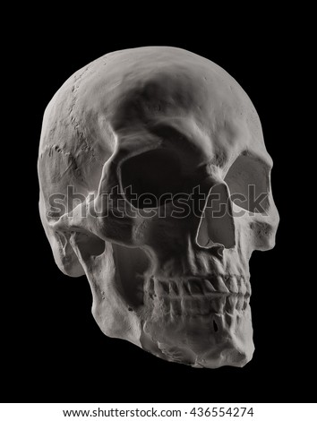anatomical plaster skull, bust, sculpture on the black background
