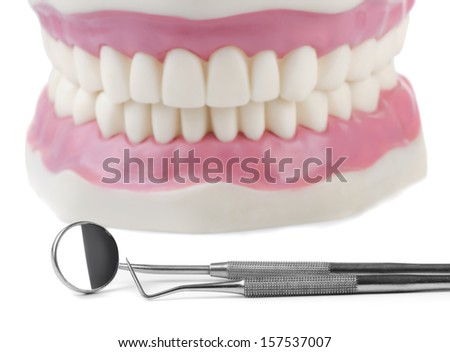 Anatomical teeth model and dental tools