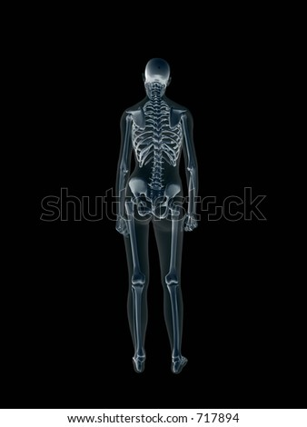 Anatomically correct Xray, x-ray of the human female body, woman. 3D render, illustration over black.  View from back. Different body parts can be requested via forum. - stock photo