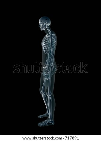 Anatomically correct Xray, x-ray of the human male body, man and woman. 3D render, illustration over black.  View from right profile. Different body parts can be requested via forum. - stock photo