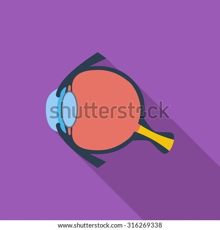 Anatomy eye icon. Flat related icon with long shadow for web and mobile applications. It can be used as - logo, pictogram, icon, infographic element. Illustration. - stock photo