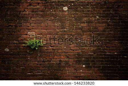 Ancient brick stone wall - stock photo