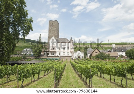 ancient building through the vineyard of the  Rhine town in Rudesheim. - stock photo