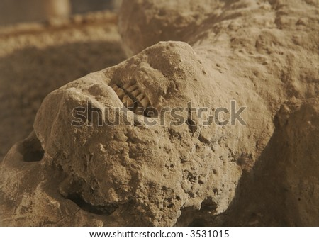 Ancient human remains as a result of the eruption of Mt. Vesuvius on 24 August 79 AD. Pompeii, Italy. - stock photo