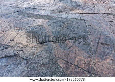 Ancient petroglyphs (rock engravings of 4th-2nd millennia BC) that depict duck, swan and deer carved on granite Onega Lake shore. Besov Nos cape, Karelia Republic, Russia.
