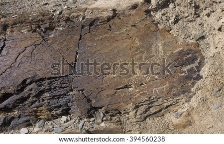 Ancient rock carvings close-up - stock photo