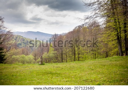 Ancient rock in forest - stock photo