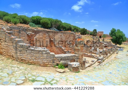 Ancient ruins from the Roman site at Chellah Kasbah (Sala Colonia), Rabat, Morocco