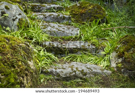 Ancient stone stair covered with moss and grass