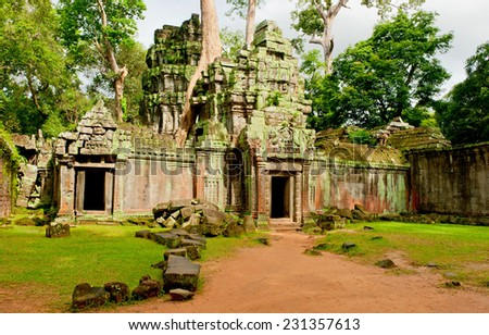 Ancient stone temple door and tree roots, Angkor Wat, Cambodia