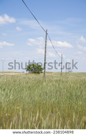 ancient telephone line cable pole in landscape field Castilla Spain - stock photo