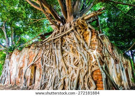 Ancient Thai Church at Sang Kratai Temple, Thailand. - stock photo