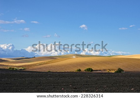 Andalusia is traditionally an agricultural area. The primary cultivation is arid farming of cereals. In the foreground there is the land plowed. - stock photo