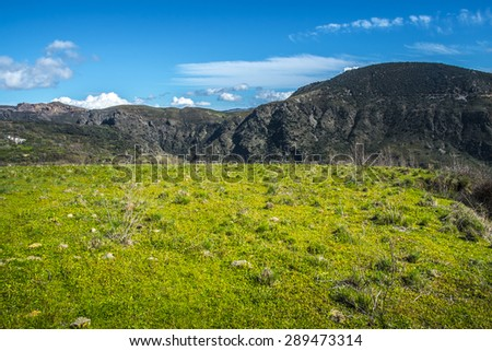 andscape with green grass field and blue sky - stock photo
