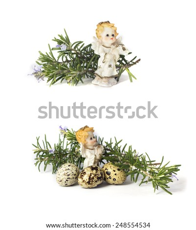 Angel and rosemary  flowers isolated on white - stock photo