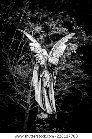 Angel Statue Stock Images Royalty Free Images Amp Vectors
