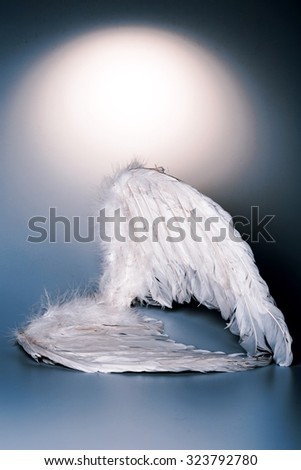 angel's wings on white background with glow - looks like a fallen angel - stock photo