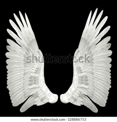 angel wings isolated on black background