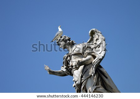 Angel with the Nails statue by Girolamo Lucenti in Rome, Italy with a seagull sitting on its head.