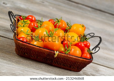 Angled view of garden fresh tomatoes in basket on rustic wooden boards  - stock photo