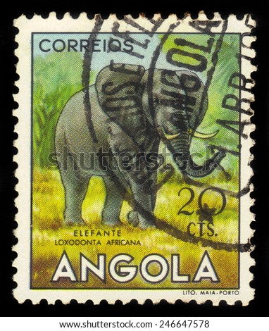 "ANGOLA - CIRCA 1953: A stamp printed in Angola shows a african savanna elephant, ""angolan fauna"" issue, circa 1953 - stock photo"