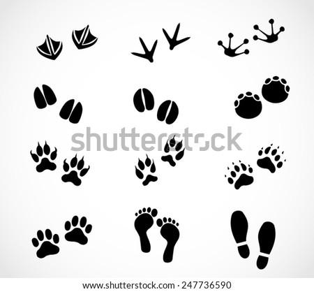 Animal and human paw and footprint set - stock photo