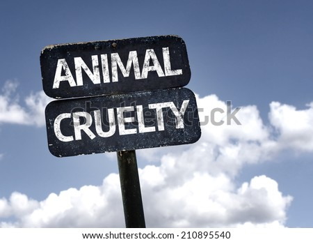 Animal Cruelty sign with clouds and sky background  - stock photo