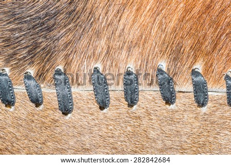 Animal fur carpet texture. - stock photo