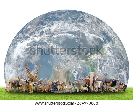 animal of the world with planet earth on white background,Element of this image are furnished by NASA - stock photo