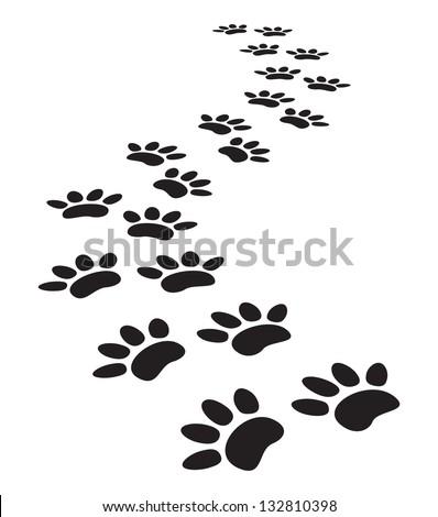 animal paw prints - stock photo