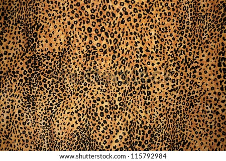 Animal Print Background - stock photo