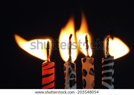Animal print candles - stock photo