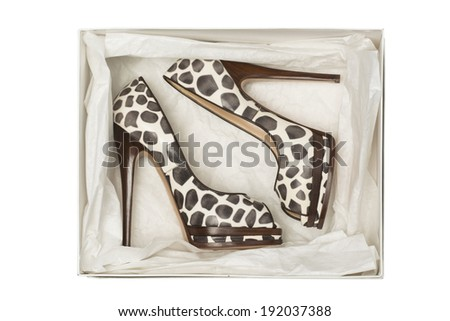 animal print high heel shoes in box isolated on white background - stock photo