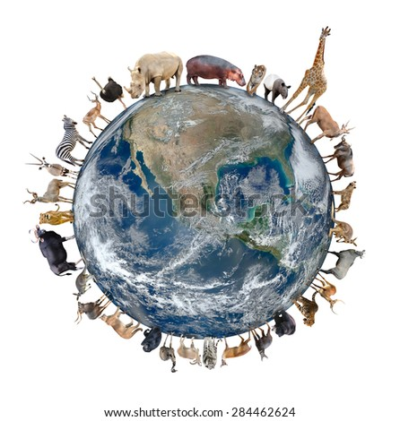 animal stand around the world isolated on white background,Element of this image are furnished by NASA - stock photo