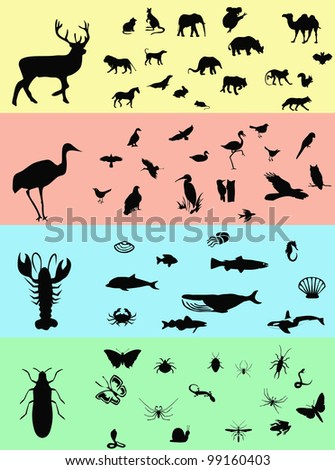 Animals banners