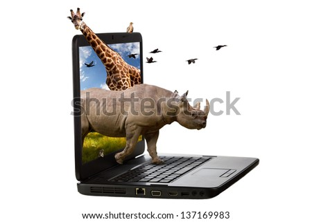 Animals coming out of a laptop screen isolated on a white background.