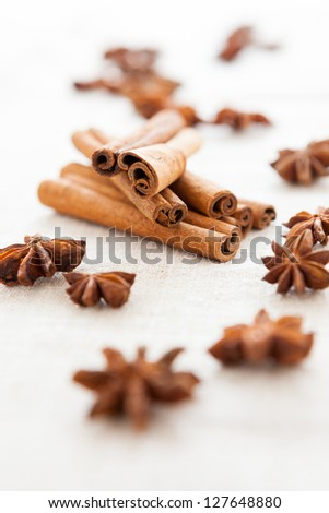 Anise and cinnamon on homemade canvas close up. Dried spices