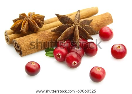 Anise and cinnamon with cranberry berries - stock photo
