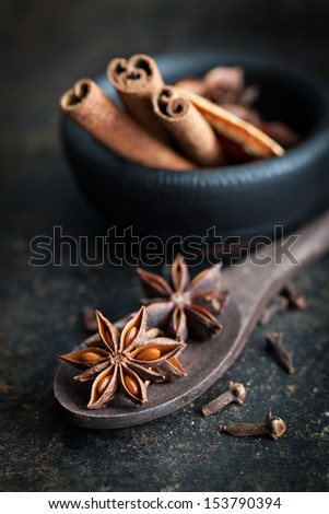 anise on a spoon with cinnamon - stock photo