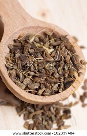 anise seeds - stock photo