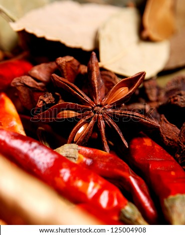 Anise star with pepers and other spices