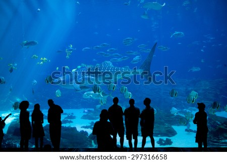 anonymous crowd look at fish through glass at large aquarium - stock photo