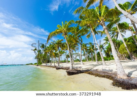 Anse Champagne beach in Saint Francois, Guadeloupe, Caribbean - stock photo