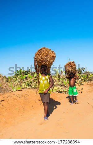 ANTANANARIVO, MADAGASCAR - JULY 3, 2011: Unidentified Madagascar girl and her son carry a banch of wood. People in Madagascar suffer of poverty due to slow development of the country
