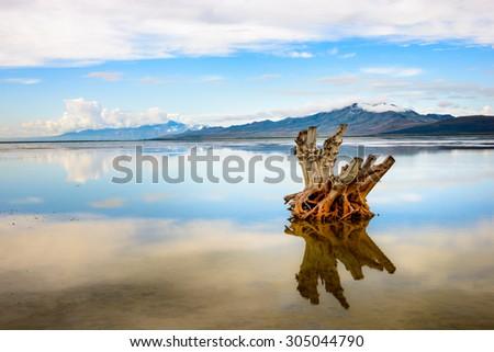 Antelope Island State Park - stock photo